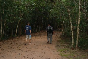 Heading into the jungle to find the hidden temples