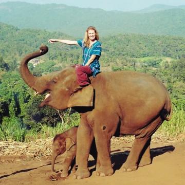Patara Elephant Farm tour