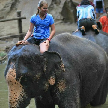 Elephant ride at Patara Elephant Farm