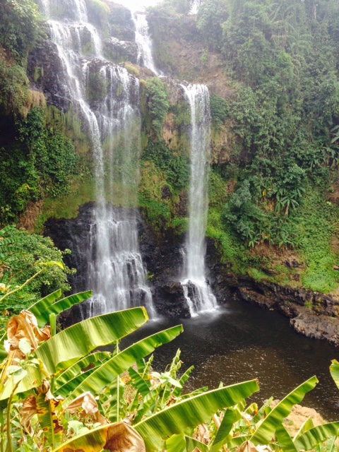Tad Yuang, a waterfall located in the rich land of the Bolaven Plateau.