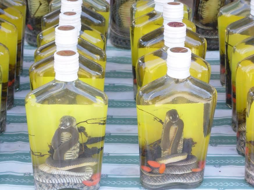 Snake Wine, a commonly sold souvenir in Southeast Asia.