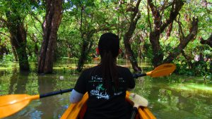 From the Ground-Kompong Phluk, Cambodia – The waters have risen, it's time to kayak!